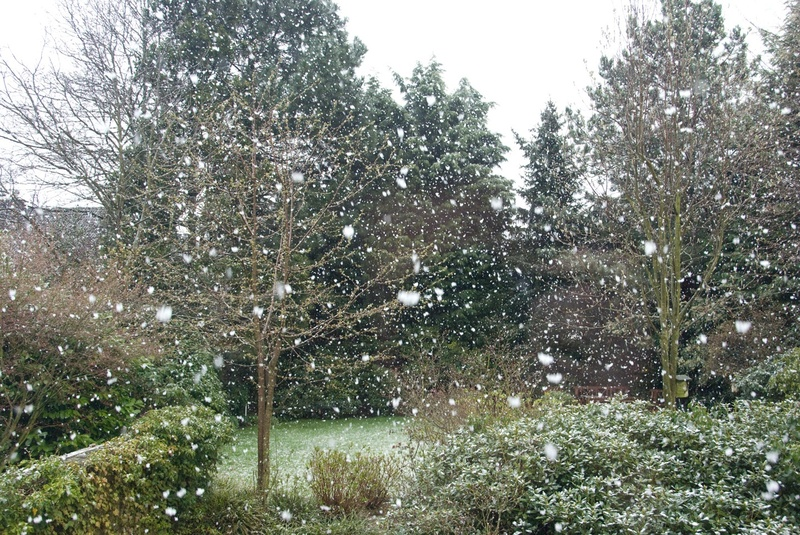 Snow_in_germany